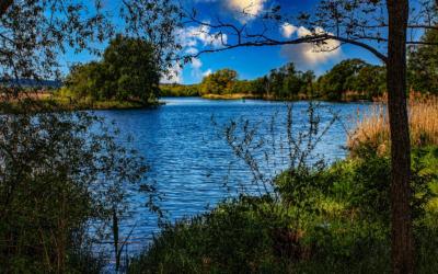 Brandenburg stellt Niedrigwasserkonzept vor