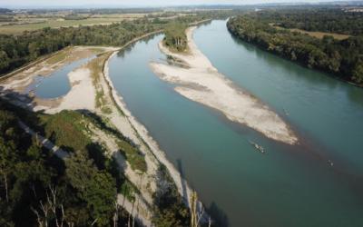 Wasserkraft in Österreich: Stärkung des Artenschutzes