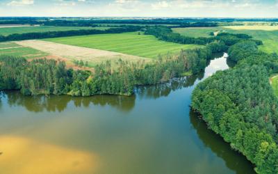 Trinkwasserschutz: Verbände einigen sich auf Positionen zum Ökolandbau in Wassergewinnungsgebieten