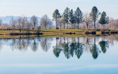 Studie attestiert Europas Flüssen schlechten Zustand
