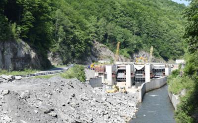 Wasserkraftwerke: Zielkonflikte und Fehlentwicklungen europäischer Umwelt- und Energiepolitik