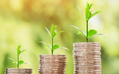 Umweltsteuern als Anreiz für nachhaltiges Wirtschaften