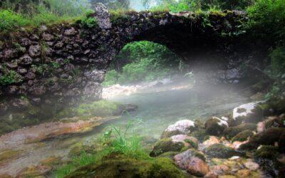 (Sommer)Tag der Hydrologie