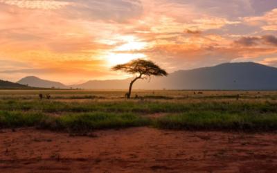Wasserressourcen: Internationaler Wasserdialog legt Handlungsempfehlungen vor