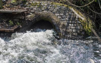 Ewigkeitsaufgabe nach Kohlebergbau: wasserrechtliche Genehmigung zum Grubenwasseranstieg erteilt