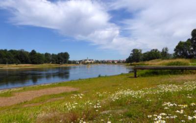 Nachhaltigkeit: Bund kümmert sich um Renaturierung von Bundeswasserstraßen