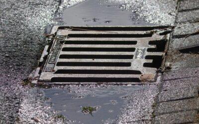 Wasserbetriebe prüfen Einleitung von Regenwasser