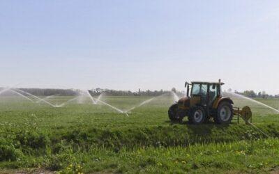 EU lässt übermäßigen Wasserverbrauch in der Landwirtschaft zu